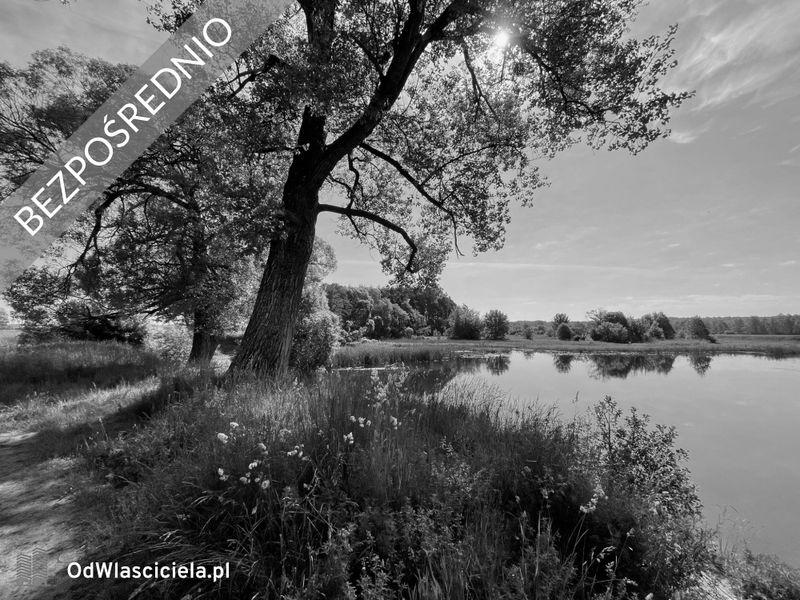 Zdjęcie ogłoszenia - Perkozia