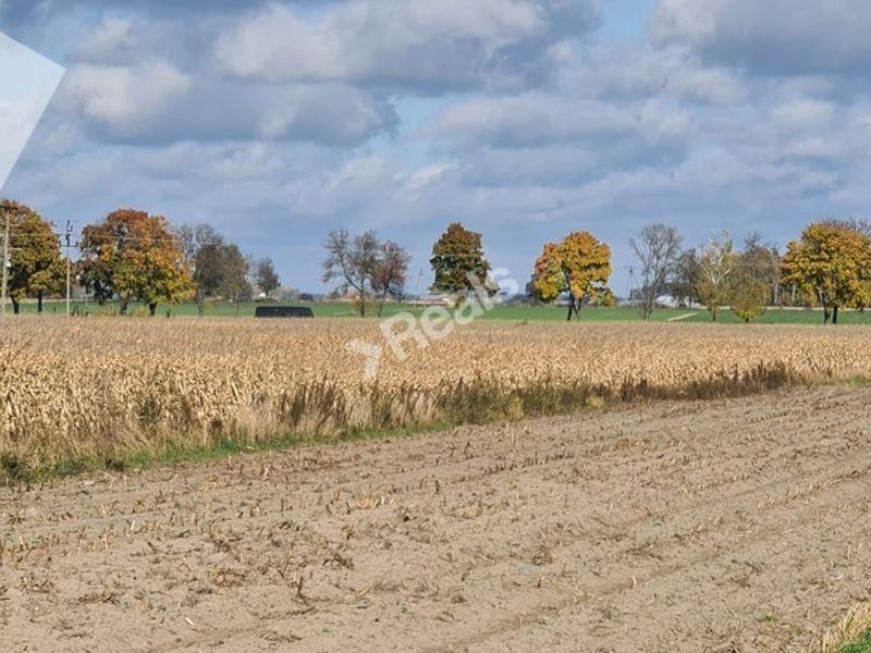 Nowy Zamość sprzedaż działka rolna